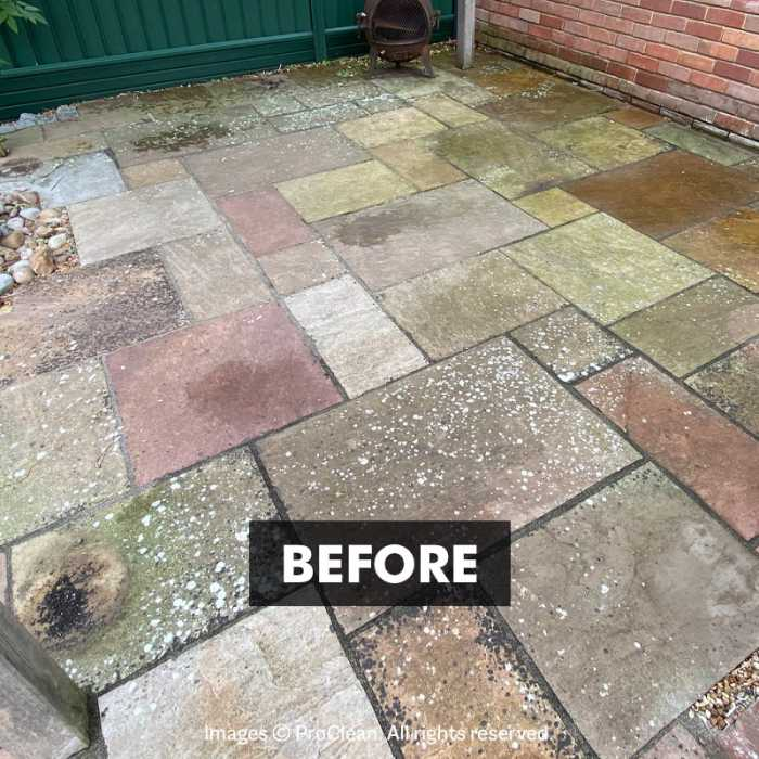 Before applying New Clean 60 Patio Cleaner