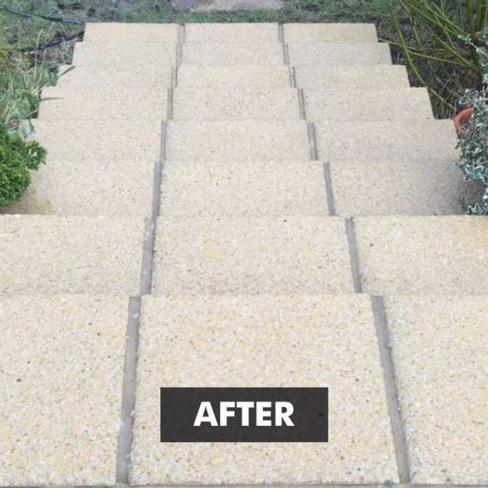 After applying New Clean 60 Patio Cleaner