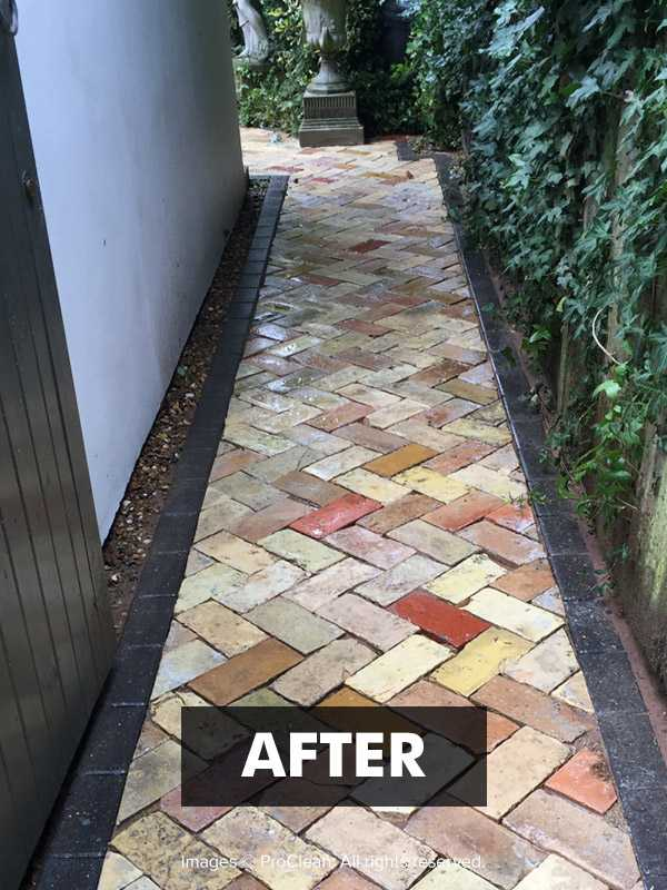 After applying No More Black Spot Patio Black Spot Remover