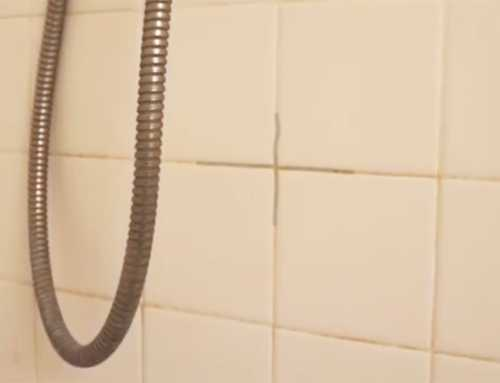 How to Remove Black Mould from Grout